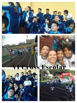 VI Cross Escolar